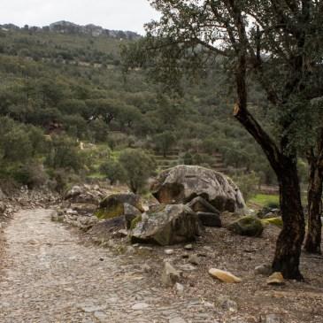 A circular walk from Carreiras, PR7 PTG-CVD
