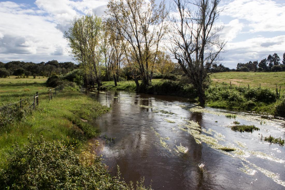 The river under the Roman Bridge between Flor da Rosa and Aldeia da Mata