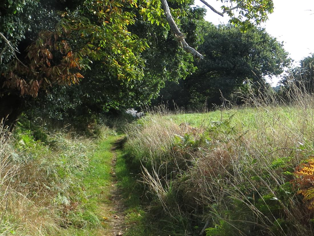 Countryside around Locronan
