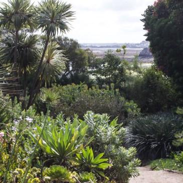Jardin Botanique et Exotique, Roscoff