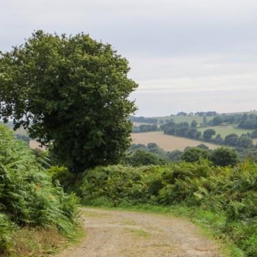 16-9-19-walk-at-locmaria-berrien-lr-2274