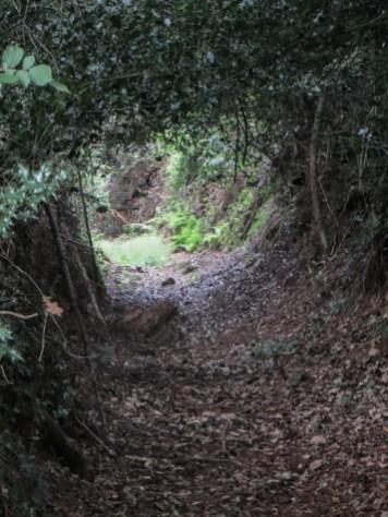 Walk at Locmaria Berrien