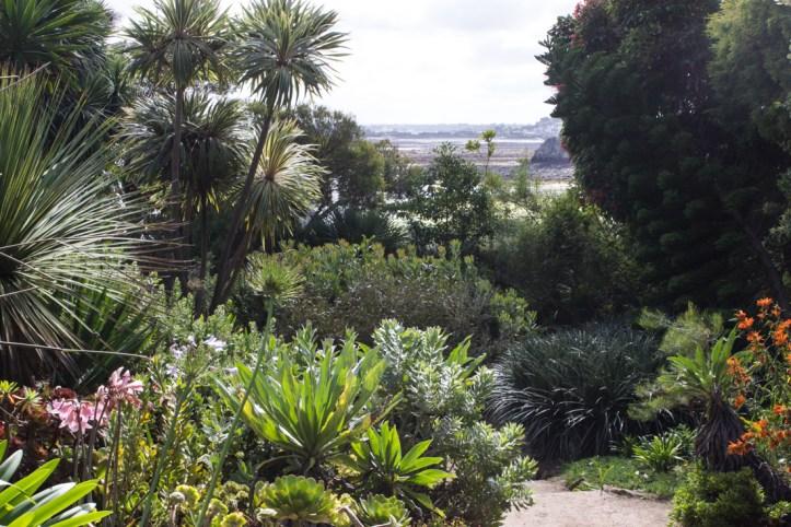 Roscoff Exotic Garden