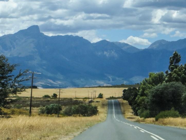 On the road into Tulbagh