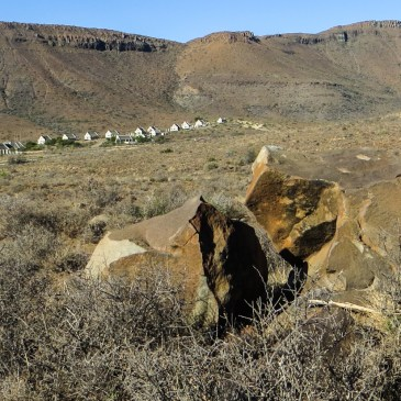The Bossie Trail in the Karoo National Park