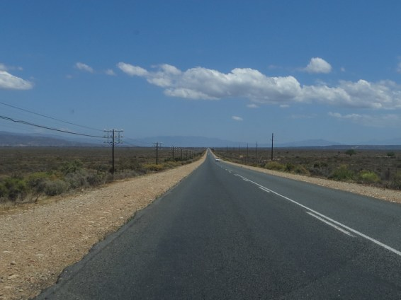 The road from Oudtshoorn to Calizdorp