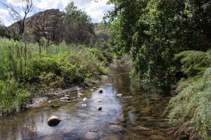 The Le Roux River in the Swartberg Mountains