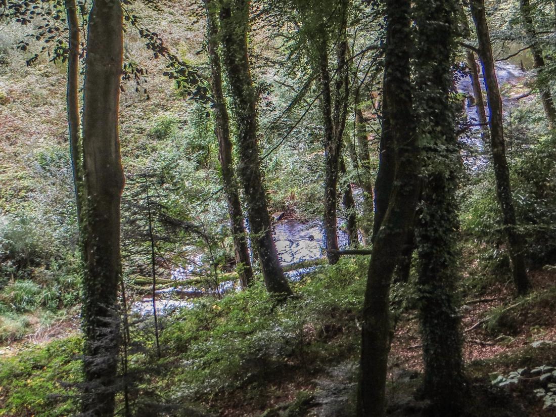 The walk along the River Gouet, Quintin