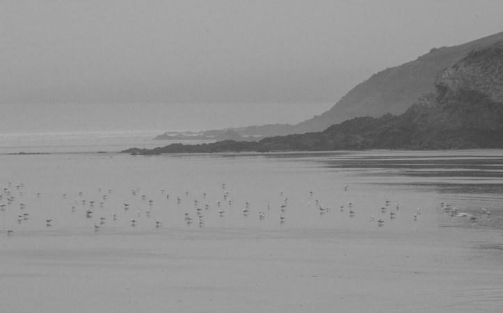 The beach at Porslous