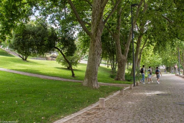 Park of Miguel Bombarda, Portalegre
