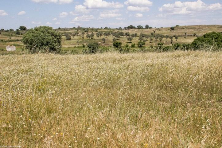 Countryside around the Anta of Sao Gens