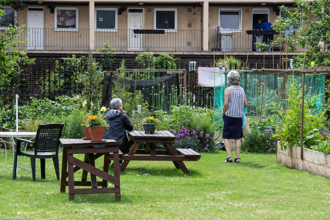 Approach Community Gardens