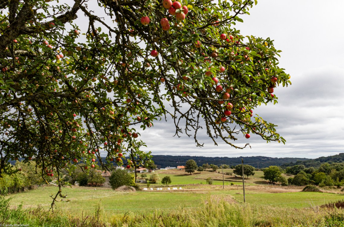 Countryside around Camporramiro