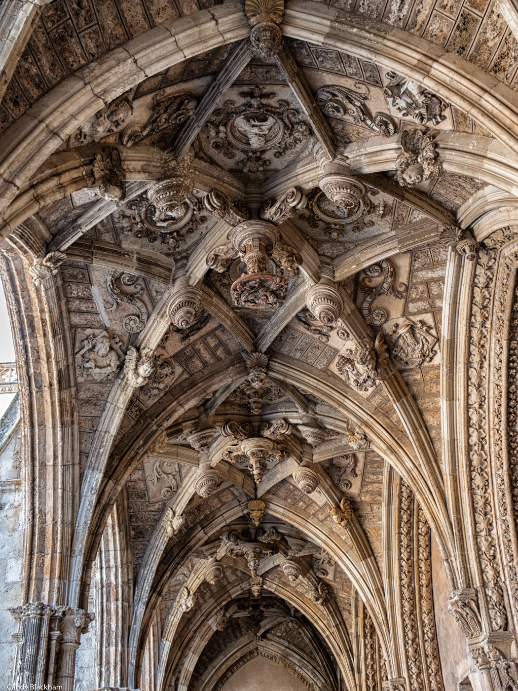 Ceiling of the Cloister of Leon Cathedral