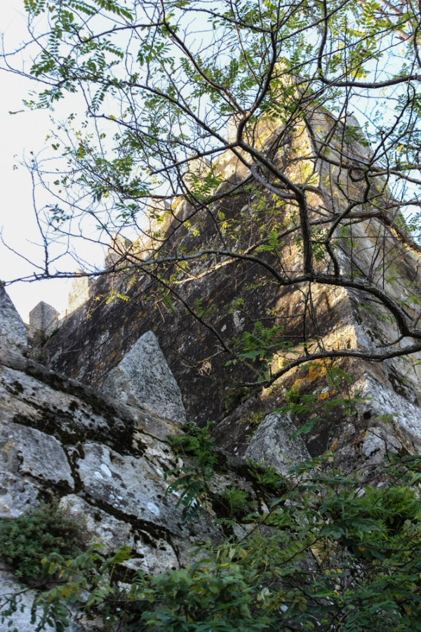 Torre de la Tenazain the Fortress of Monterreal