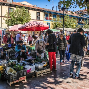 The Market in Oviedo