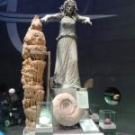 natural history museum img0002