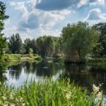 Regent's park manzarası