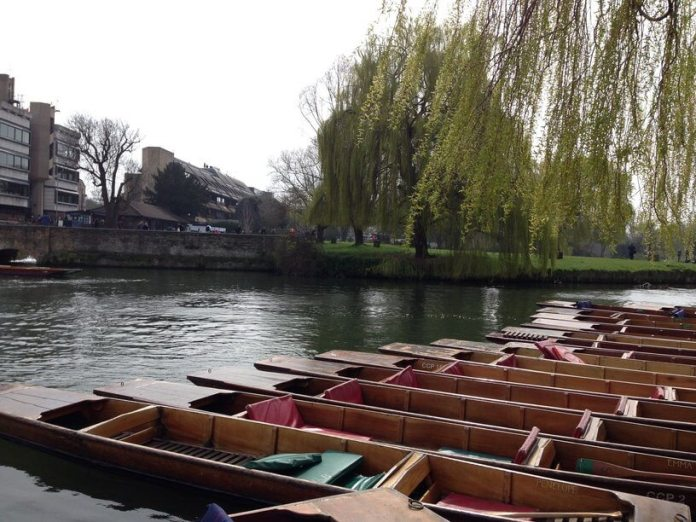cambridge punting tekneleri
