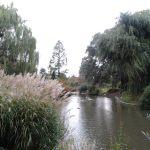 regents park image 005