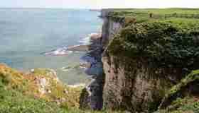 Bempton Cliffs, un posto speciale nello Yorkshire