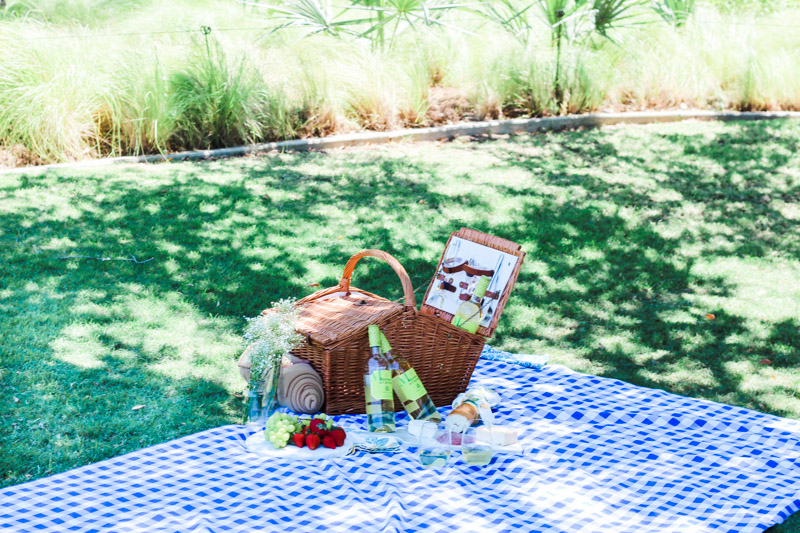 Picnic_in_the_Park-2