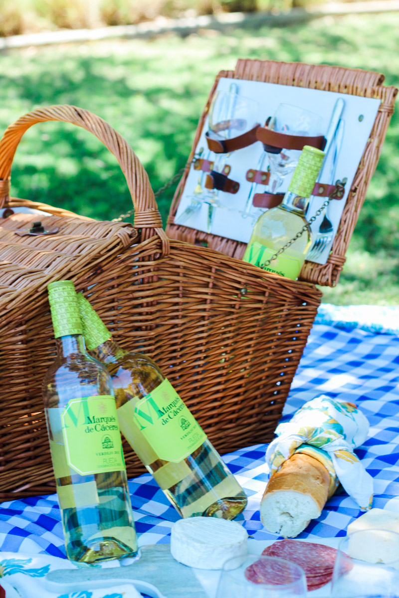 Picnic_in_the_Park-5