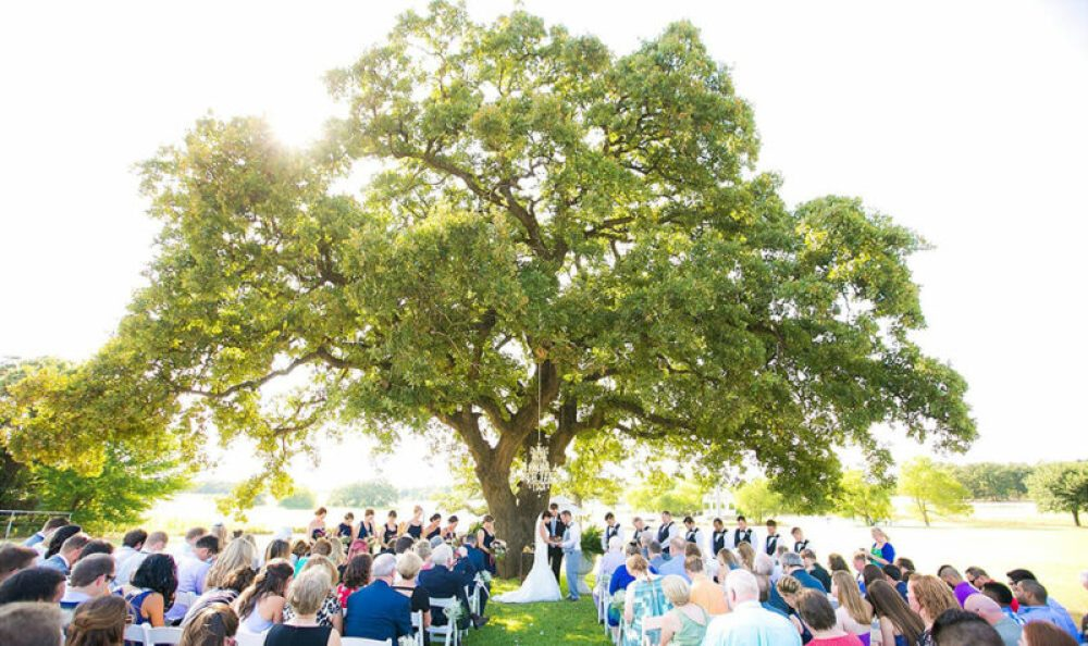 Fort Worth Mansion Wedding