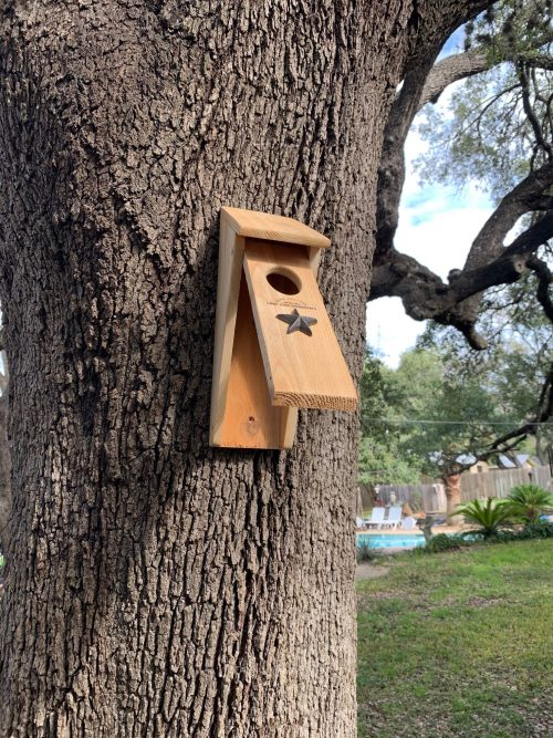 Bird House pivoting front