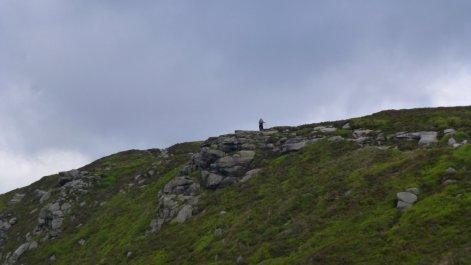 Walker on the edge path
