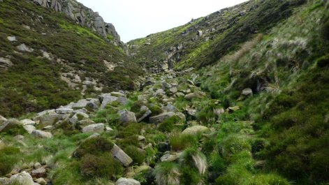 Looking back up into Crowden Clough