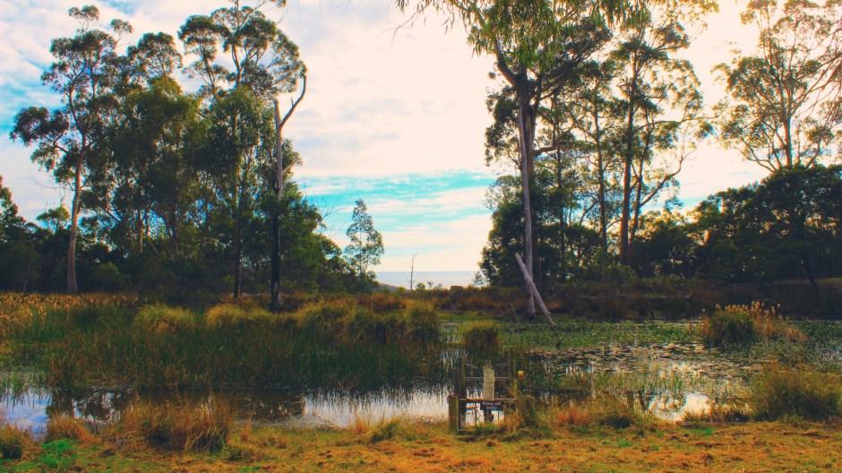 Hotel Review: Freycinet Eco Retreat, Freycinet National Park, Tasmania