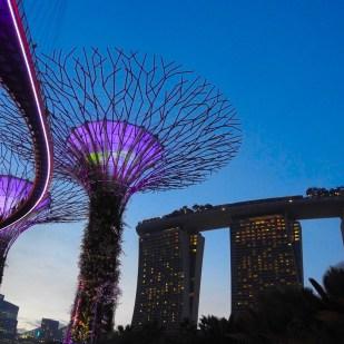Gardens by the Bay, Marina Bay, Singapore