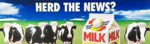 Herd the news?2