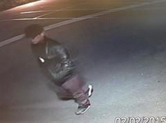 car theft suspect 2