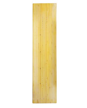 Rayne Longboards Template Back