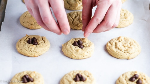 Placing chocolate chips on top of soft peanut butter cookies.