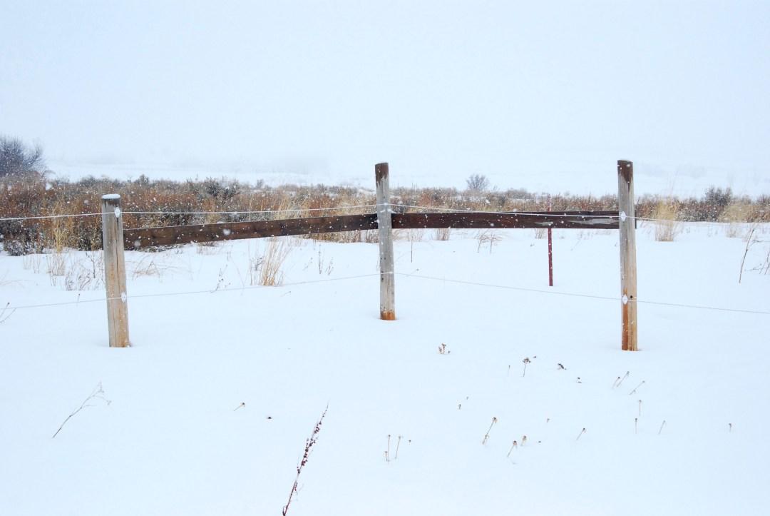 Corner posts on electric fence