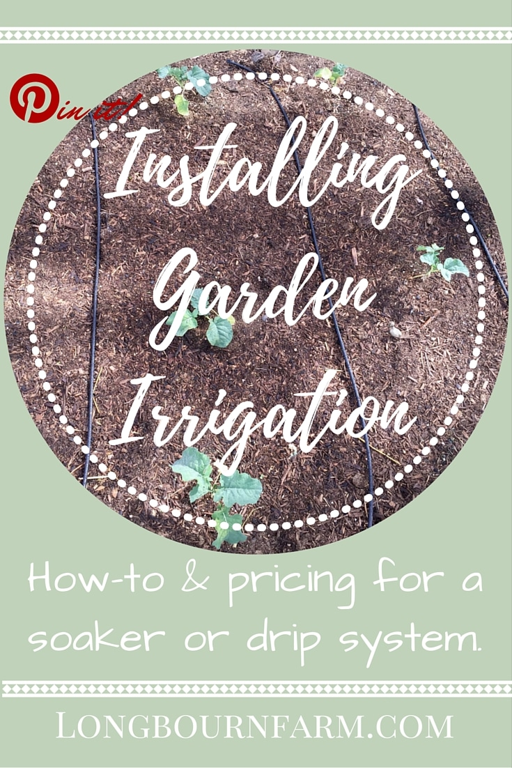 How to install drip or soaker irrigation in your garden. Its an easy and fast garden watering system that you can set up yourself and a great way to conserve water.