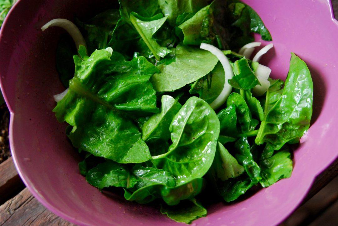 Garden Salad with Lemon Vinaigrette