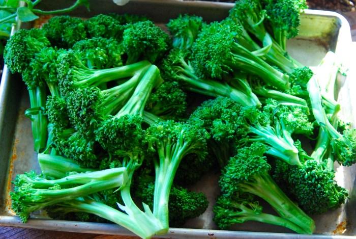 Broccoli post-blanch