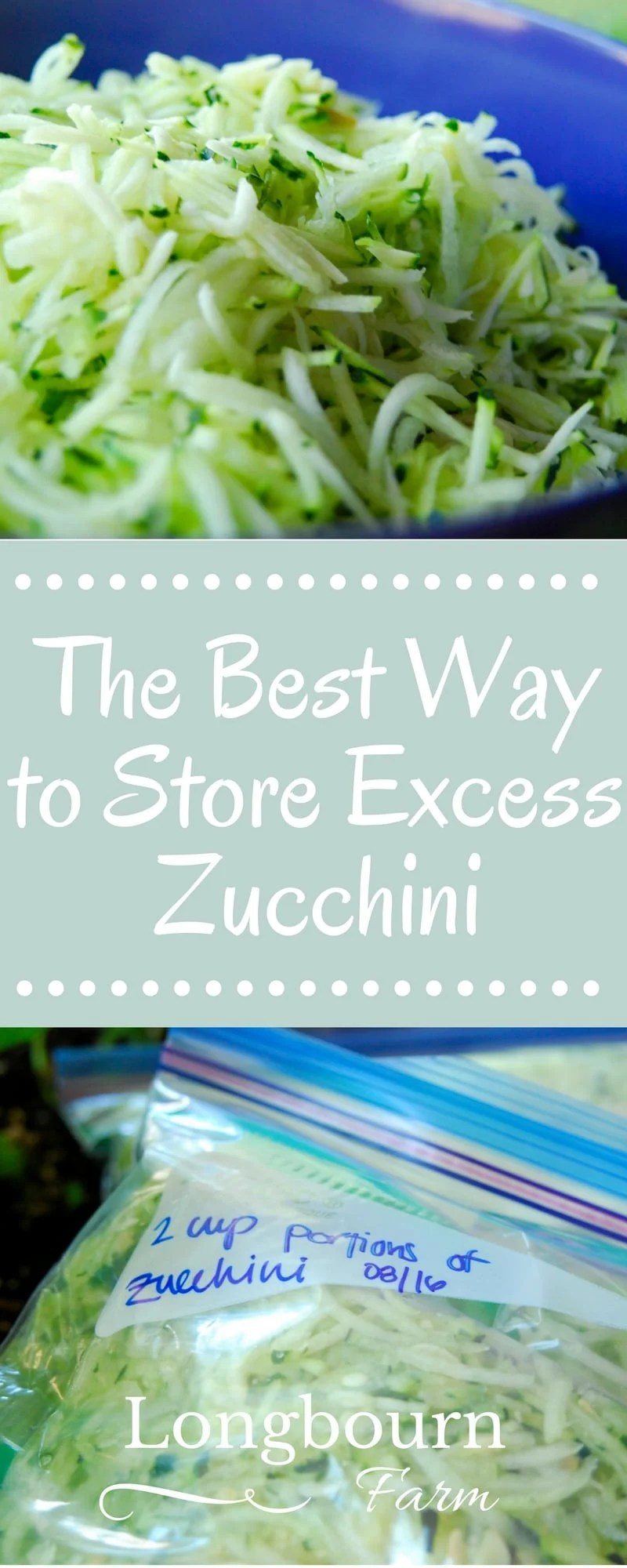 Find out the best way to store zucchini! Shredding and freezing it is the way to go! It's easy, fast, and lets you enjoy it all winter long.