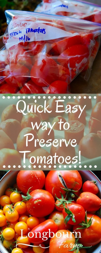 Looking for a quick easy way to preserve tomatoes? Freeze the tomatoes raw! Simply dice, flash freeze, bag them up and you'll have fresh garden tomatoes all year long. It's a great way to preserve your garden harvest.