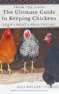 Raising Chickens for Eggs