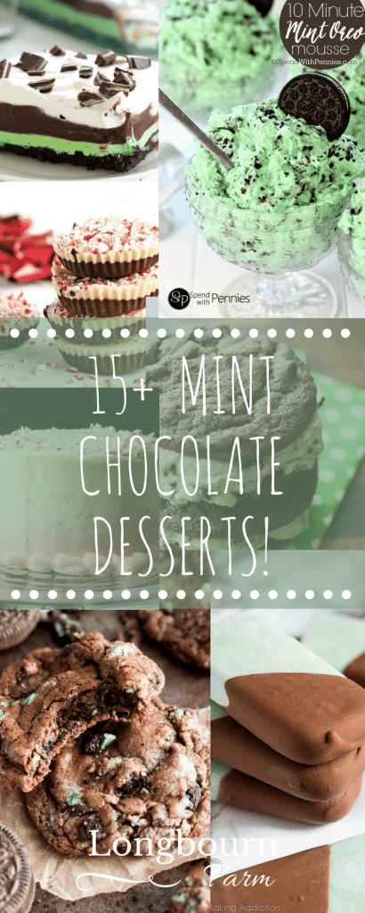 More than 15 amazing mint chocolate dessert recipes for every occasion! From cakes to cookies to freezer treats, this post has something minty for everyone!