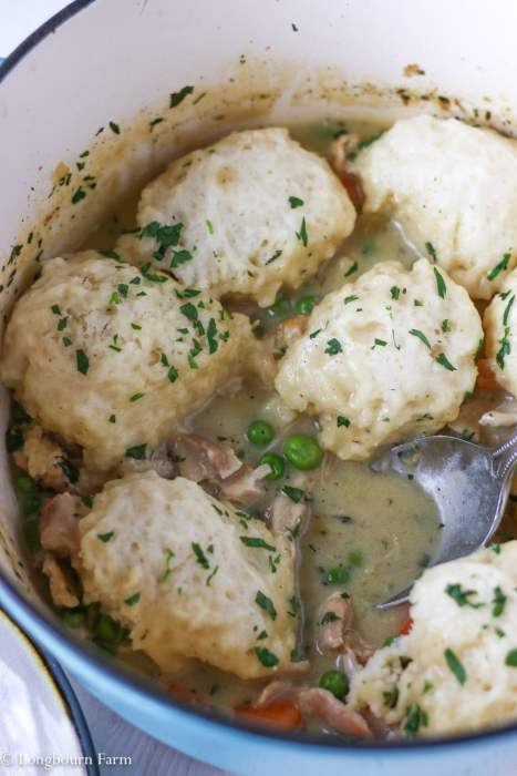 America S Test Kitchen Chicken And Dumplings Recipe