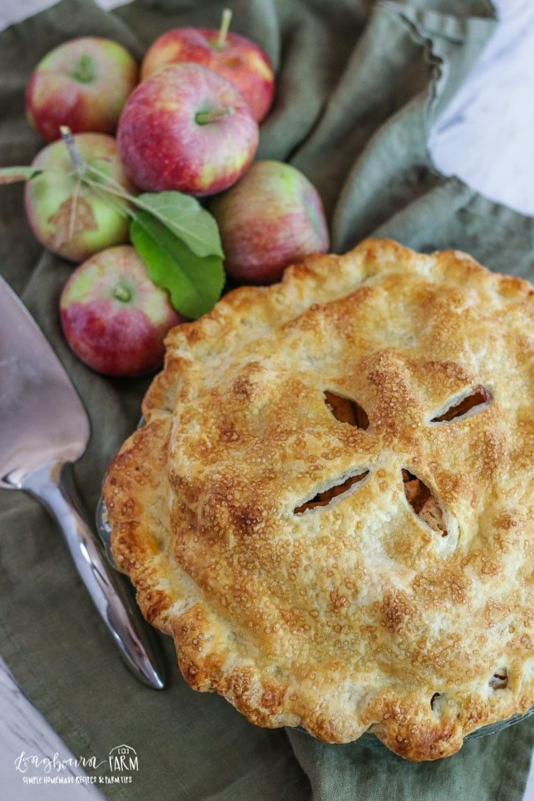 homemade apple pie longbourn farm - Americas Test Kitchen Apple Pie