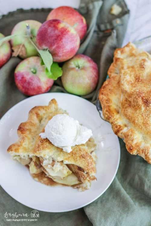 Slice of homemade apple pie next to whole pie.
