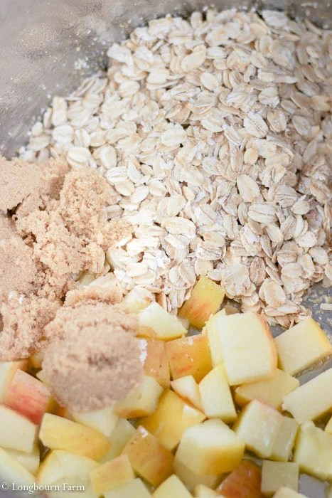 Oats, brown sugar and apples in an Instant Pot.