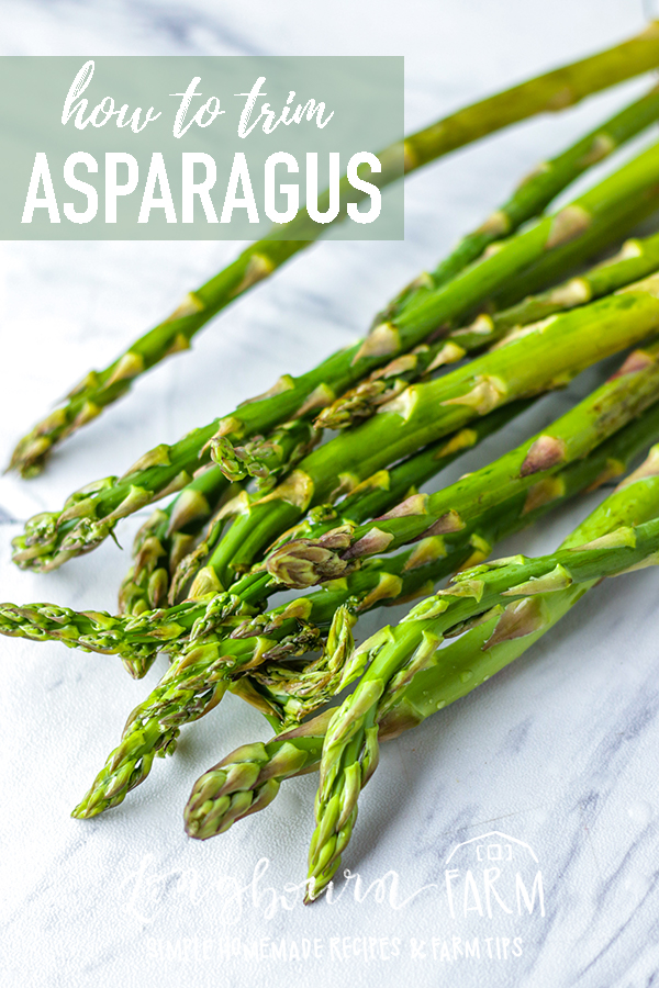 Don't know how to trim asparagus? It's easy! There is a simple method that guarantees being left with only the fresh and delicious part of the asparagus spear.  Read on to learn how to trim asparagus. #gardenfresh #asparagus #veggies #vegetables #howtotrimasparagus #trimasparagus #eatveggies #greenfood